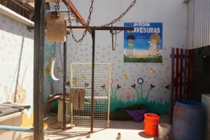 Spotlight on Voluntario Global's Kindergarten Project